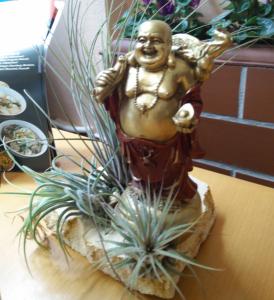 Mon Soon, die sympathische Buddhistenloge
